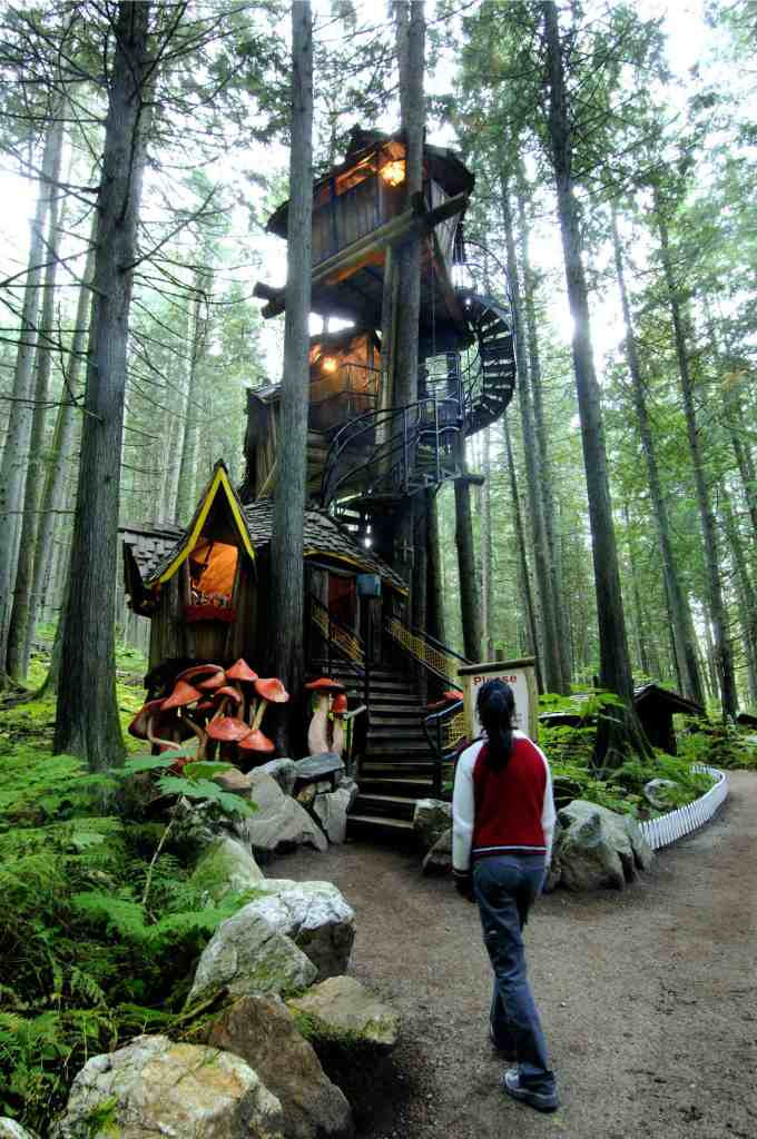treehouse at enchanted forest in revelstoke in summer