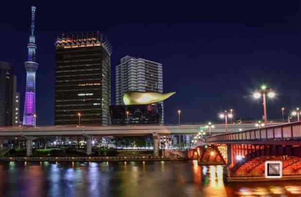 city lights-49