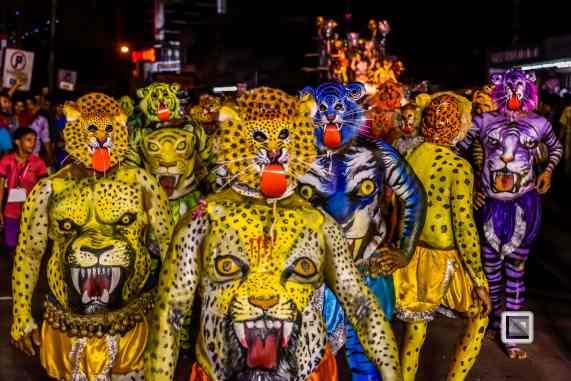 Pulikali Festival Thrissur Kerala 2015-94