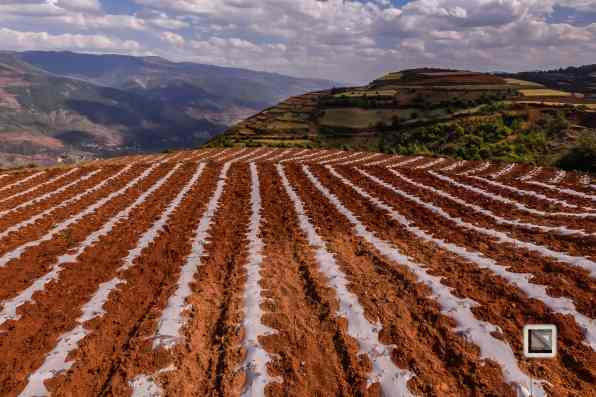 China - Yunnan - Dongchuan-11