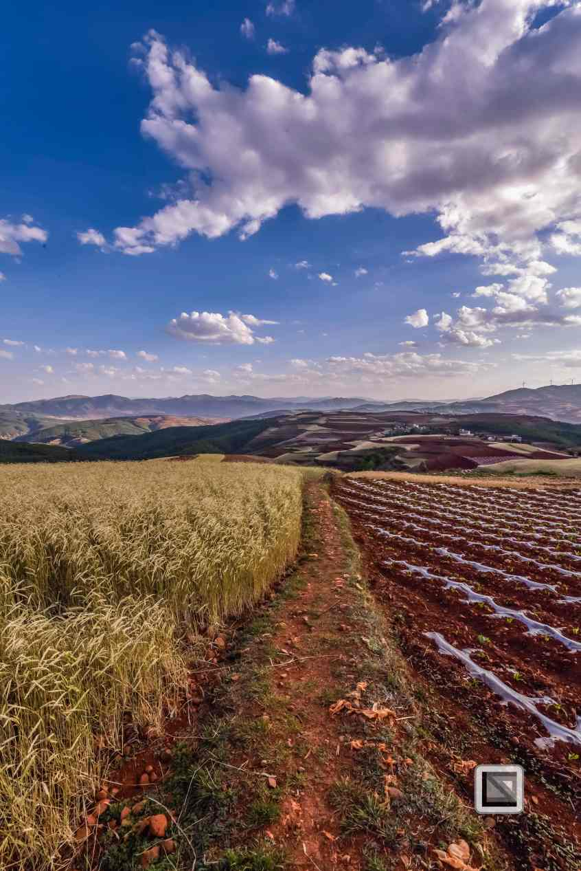 China - Yunnan - Dongchuan-37