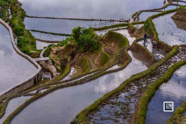 China - Yunnan - Yuanyang-23