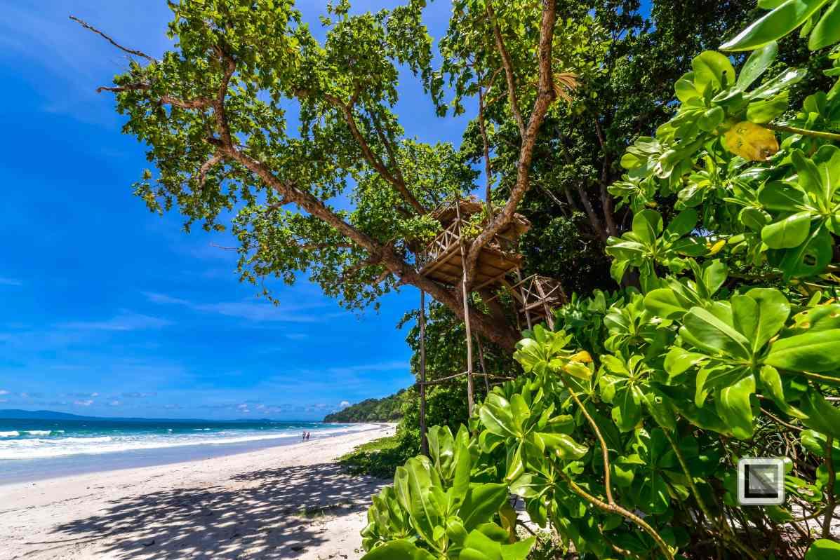 India - Andaman Islands - Havelock-18