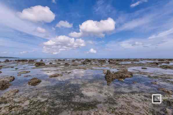 India - Andaman Islands - Havelock-4
