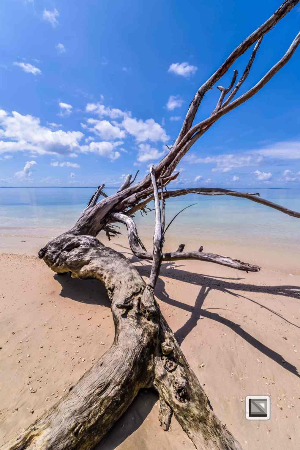 India - Andaman Islands - Havelock-47