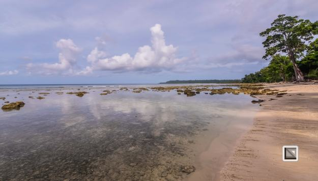 India - Andaman Islands - Neil