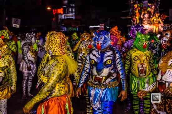 India - Kerala - Thrissur - Onam Festival - Pulikali-82