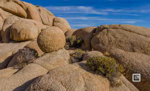 USA - California - Joshua national park-26