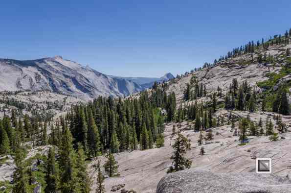 USA California - Yosemite National Park-2