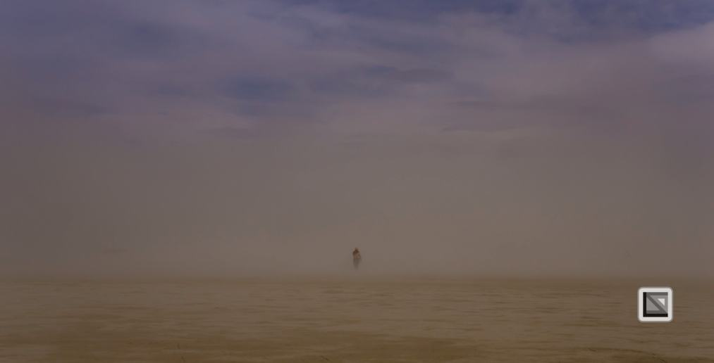 USA - Nevada - Burning Man Festival-130