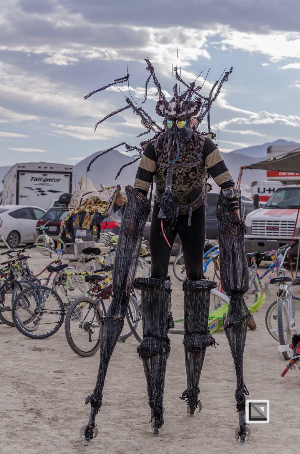 USA - Nevada - Burning Man Festival-155