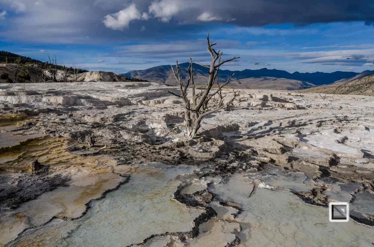 USA - Wyoming - Yellowstone National Park-22