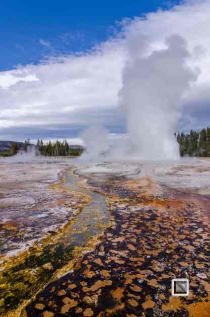 USA - Wyoming - Yellowstone National Park-62