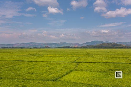 rice_fields-Vietnam (4 von 15)