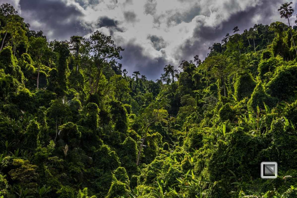 vietnam-hcm_trail-khe_sanh-to-phong_nha-782