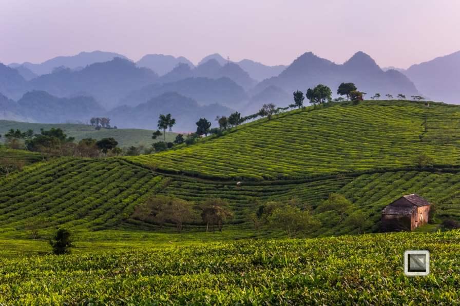 vietnam-moc_chau-son_la_province-56
