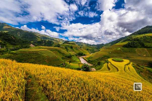vietnam-mu_cang_chai-yen_bai_province-115
