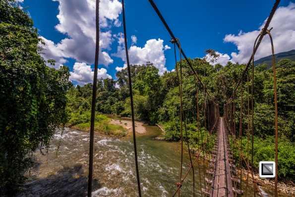 Malaysia-Sarawak-Mulu_Nationalpark2-53