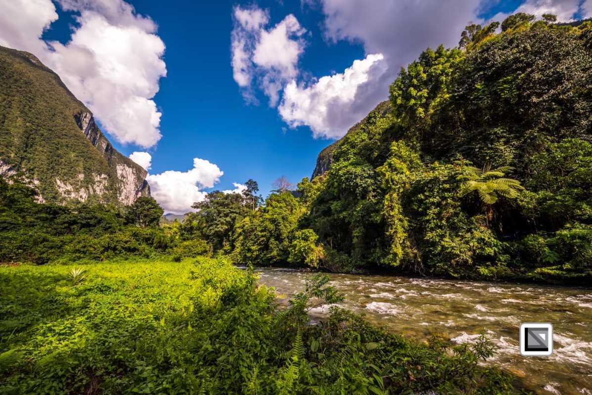 Malaysia-Sarawak-Mulu_Nationalpark2-76