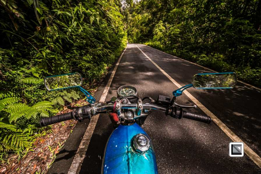 Indonesia-Sumatra-286