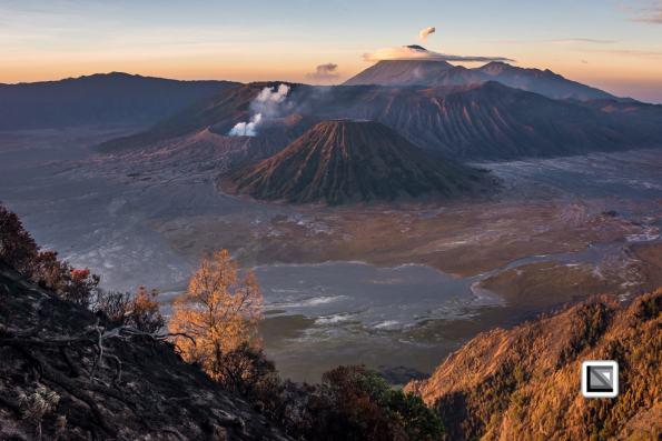 Indonesia-Java-Bromo_Volcano-76