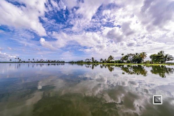 Kerala Backwaters-72