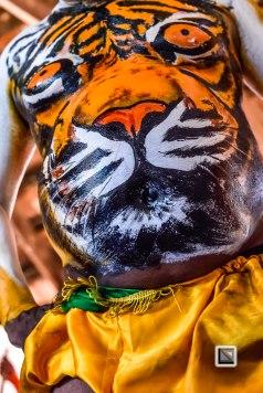 Pulikali Festival Thrissur Kerala 2015-19