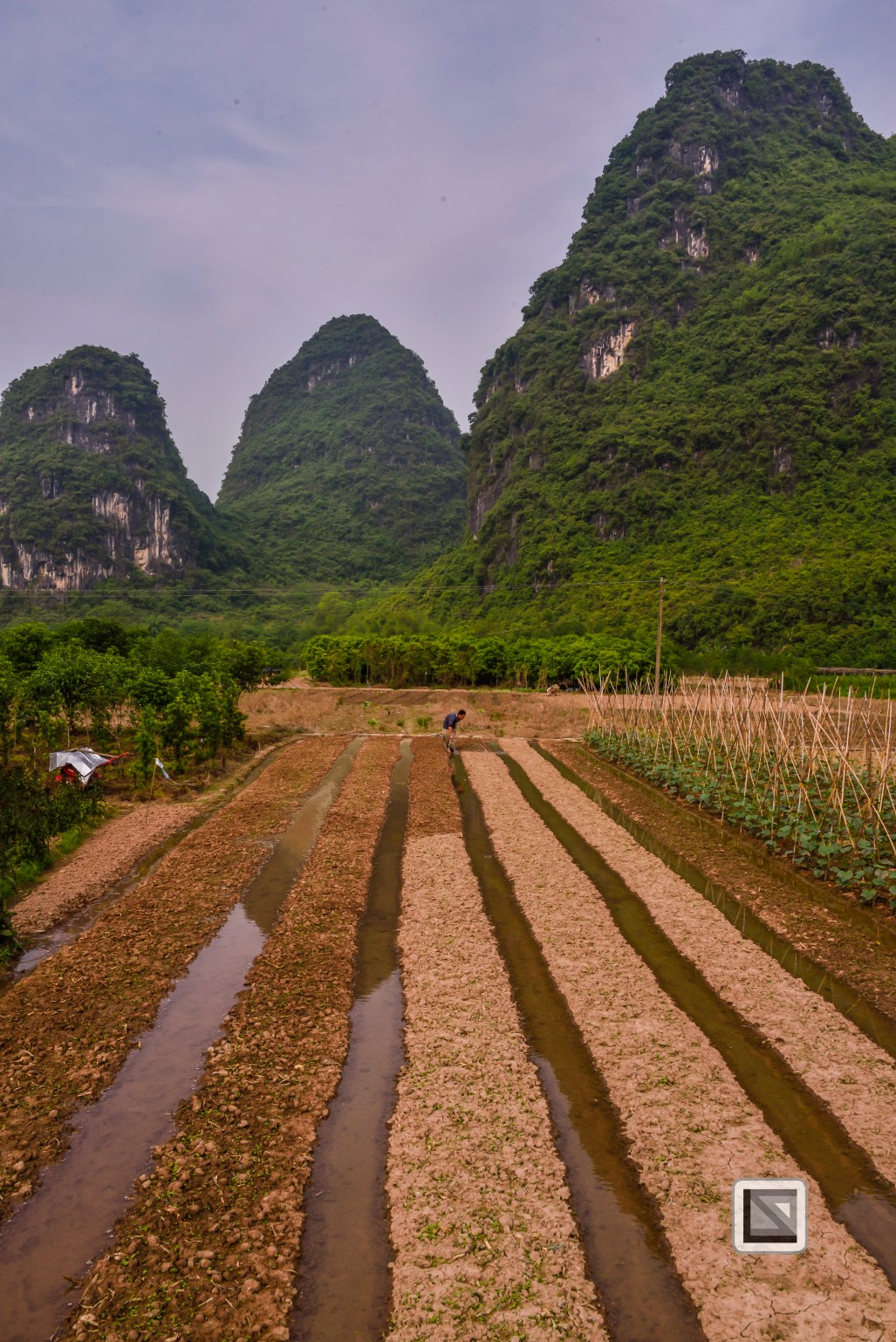 China - Guangxi - Zhuang - Guilin-15