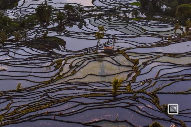 China - Yunnan - Yuanyang-43