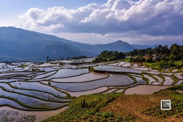 China - Yunnan - Yuanyang-73
