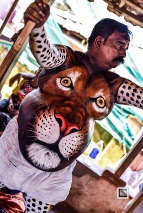 India - Kerala - Thrissur - Onam Festival - Pulikali-44
