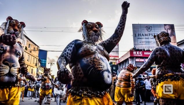 India - Kerala - Thrissur - Onam Festival - Pulikali-66