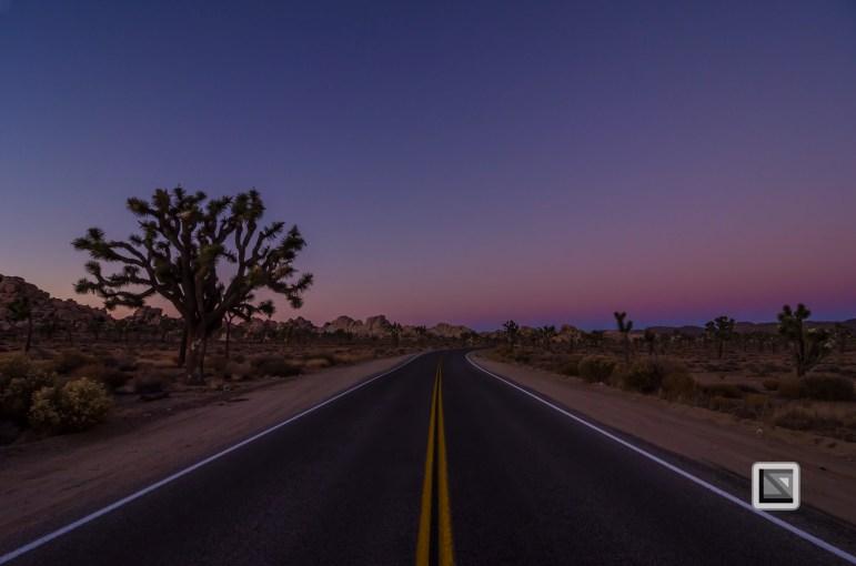 USA - California - Joshua national park-12