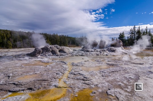 USA - Wyoming - Yellowstone National Park-54