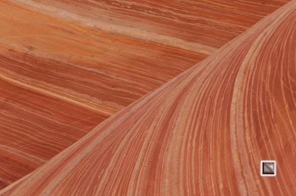 USA - Arizona - Vermillon Cliffs-58