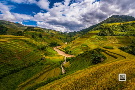 vietnam-mu_cang_chai-yen_bai_province-107