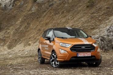 Ford Ecosport 151 (Copy)
