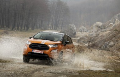 Ford Ecosport 161 (Copy)