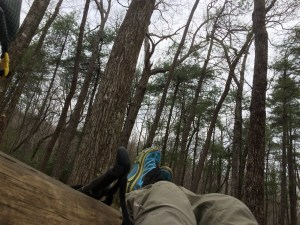 Appalachian Trail Gooch Gap