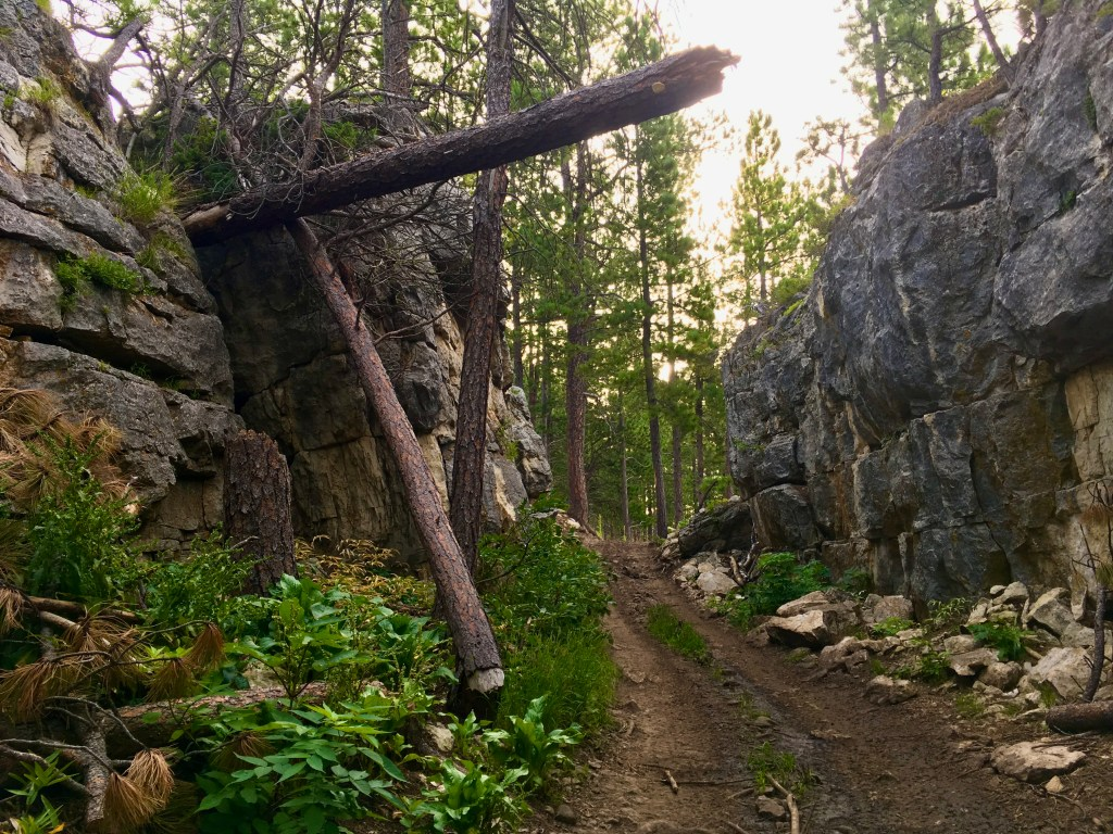 black hills centennial trail clay bonnyman evans