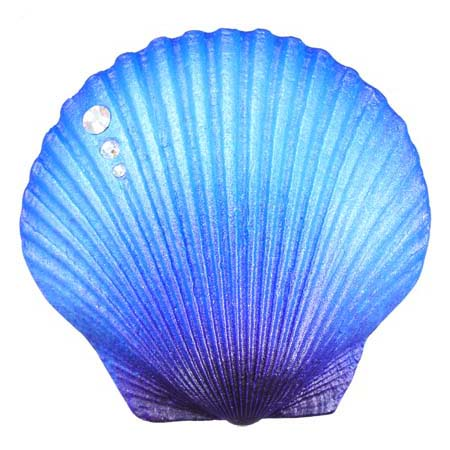 Scallop Shell Magnet