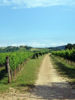 Staycation in Friuli–Venezia-Giulia_10