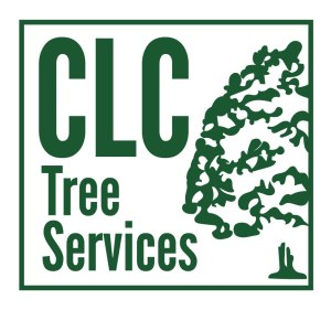 CLC_Logo_Final 2016