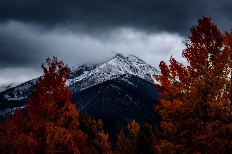 Schneebedeckte Berge, wolkenverhangen, mit herbstlichen Laubbäumen im Vordergrund