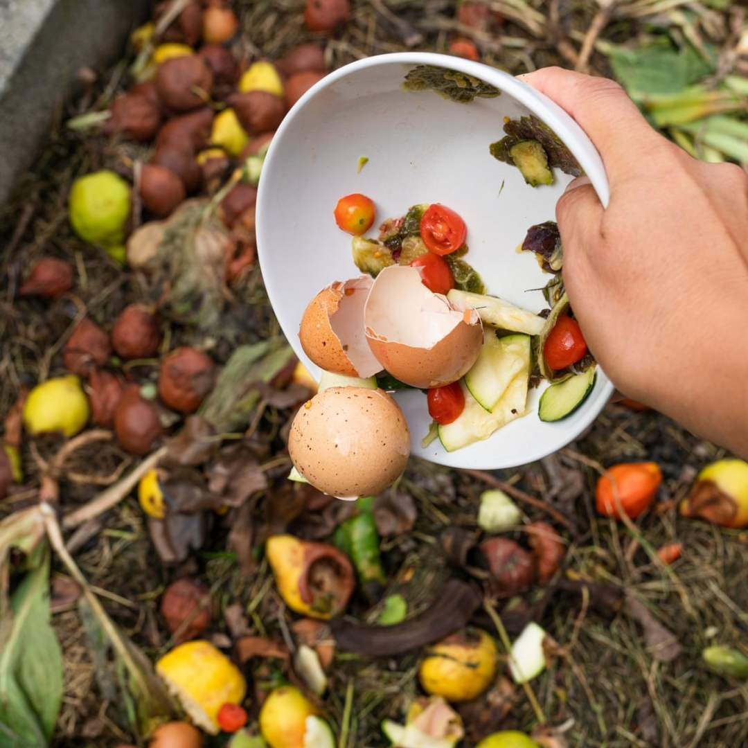 compost composting