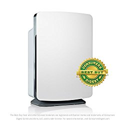 best air cleaner for odors