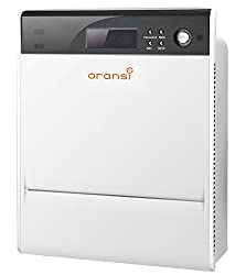 best whole house air purifier for mold