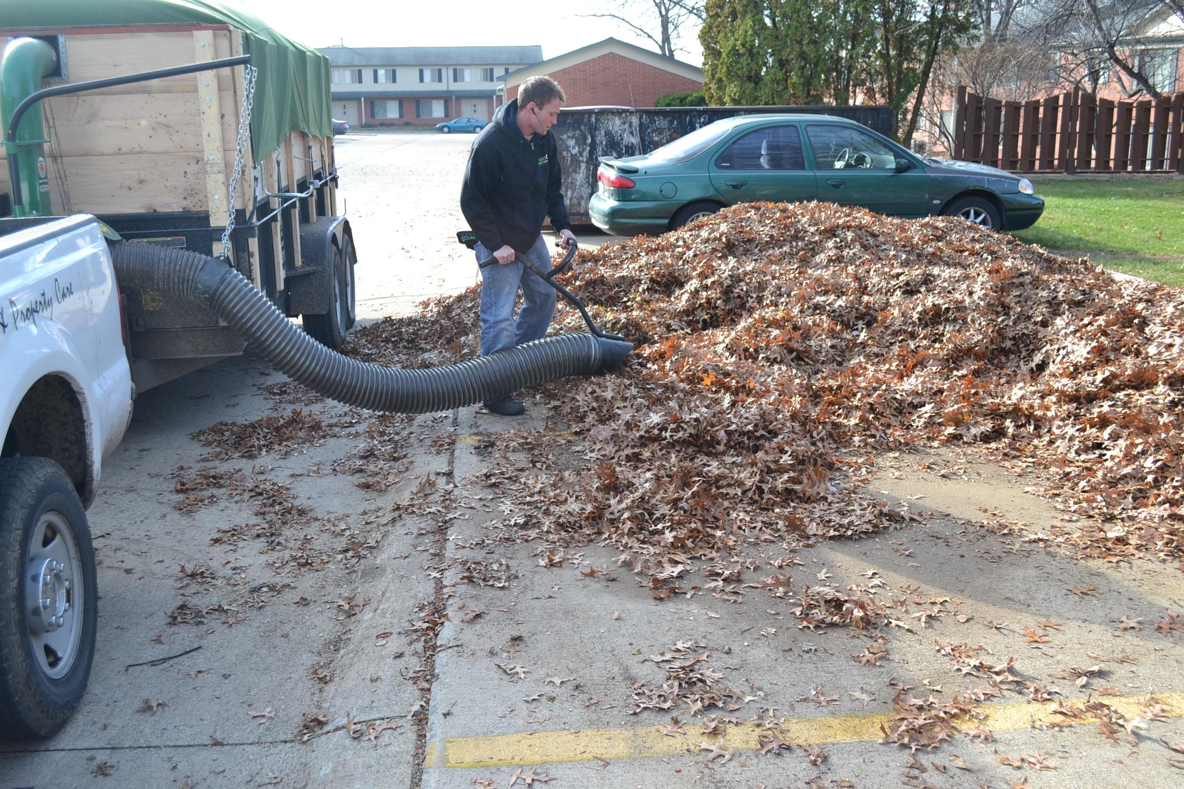 How Get Rid Leaves Yard