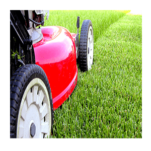 lawn mower maintaining lawn