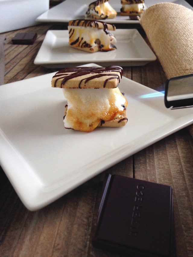 s'mores5